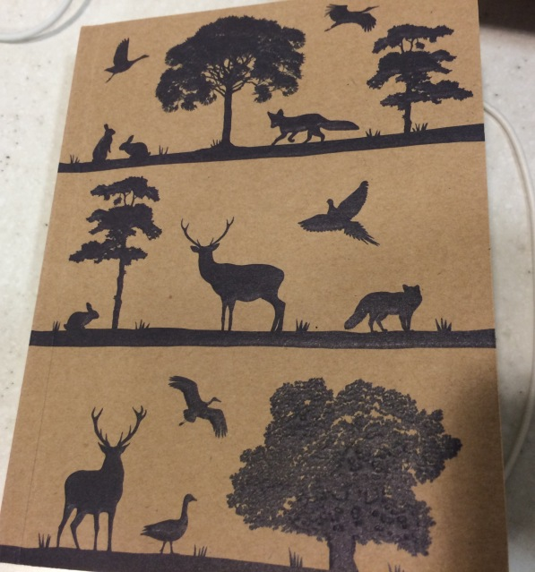 NaNoWriMo My New Notepad